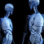 Wo kauft man günstig Röntgenzubehör?